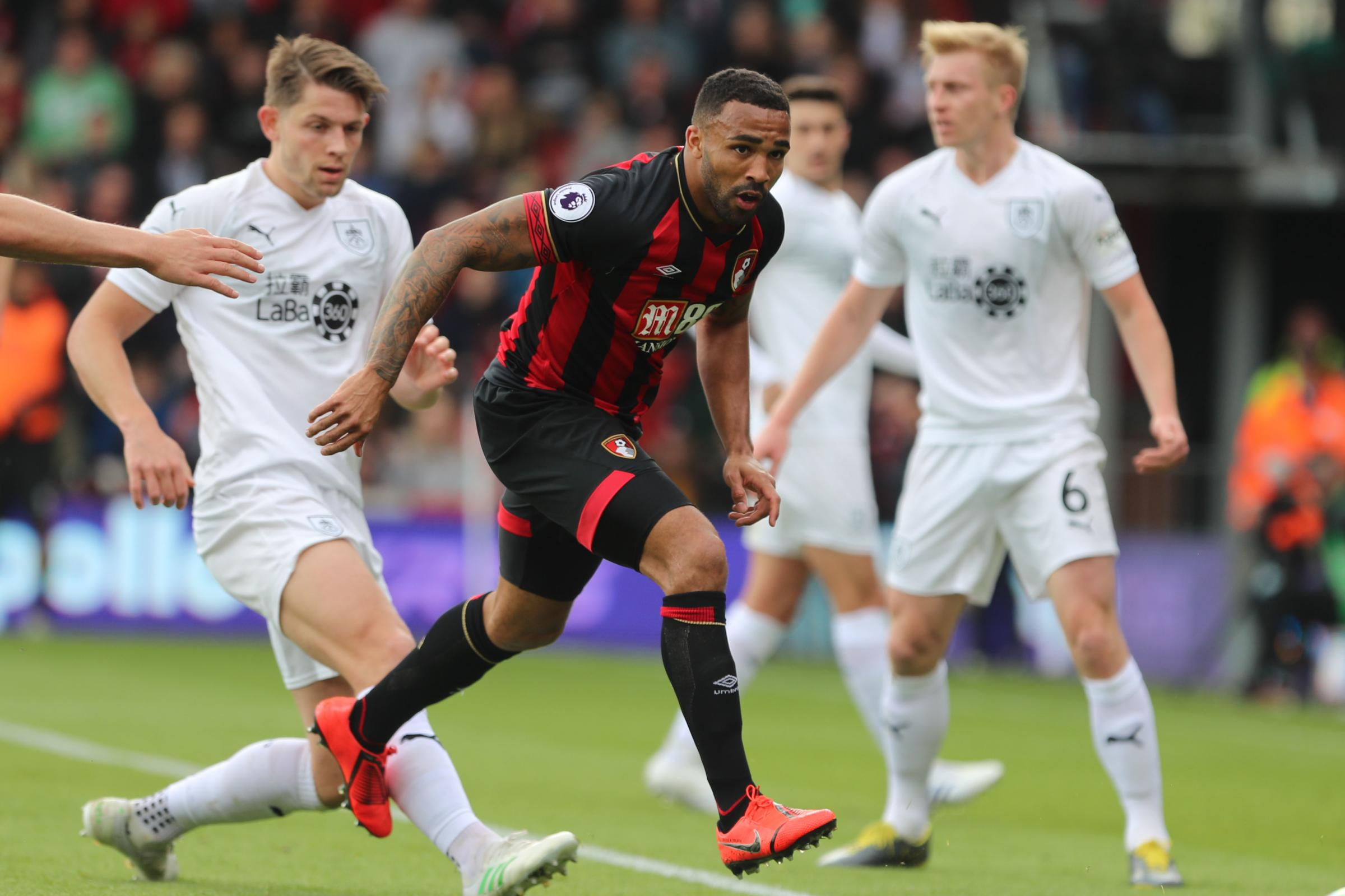 Report claims AFC Bournemouth are set to offer new five-year contract to Callum Wilson