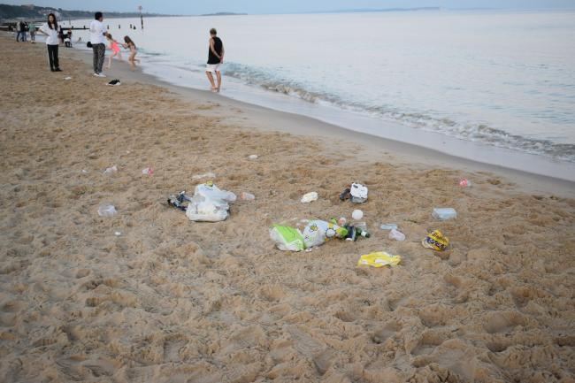 Les Brown, a member of the Daily Echo Camera Club, took these photos of litter on Bournemouth beach last month