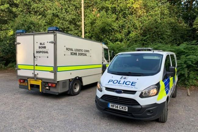Bomb squad called as land mine found at Wareham nature