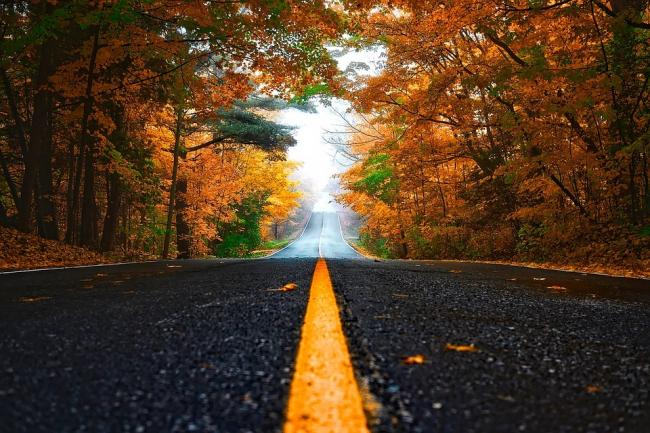 A generic picture of a road. Picture via Pixabay