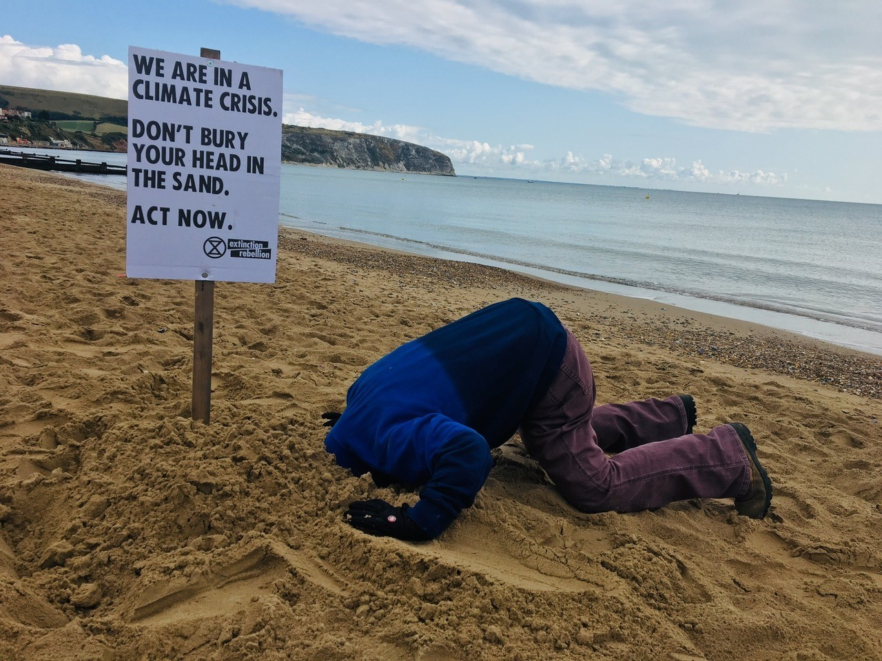Environment activists urge 'take your head out of the sand'