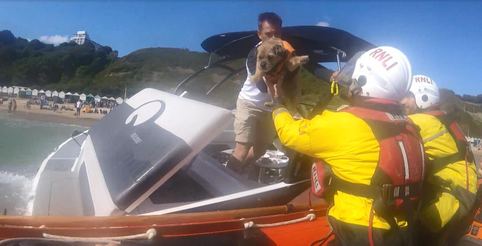 Four people and a dog rescued from sinking power boat on hectic day for RNLI