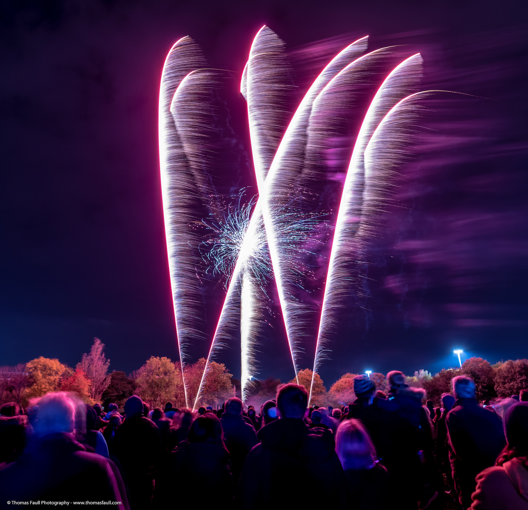 Get in the diary: 15 firework displays in Dorset and the New Forest