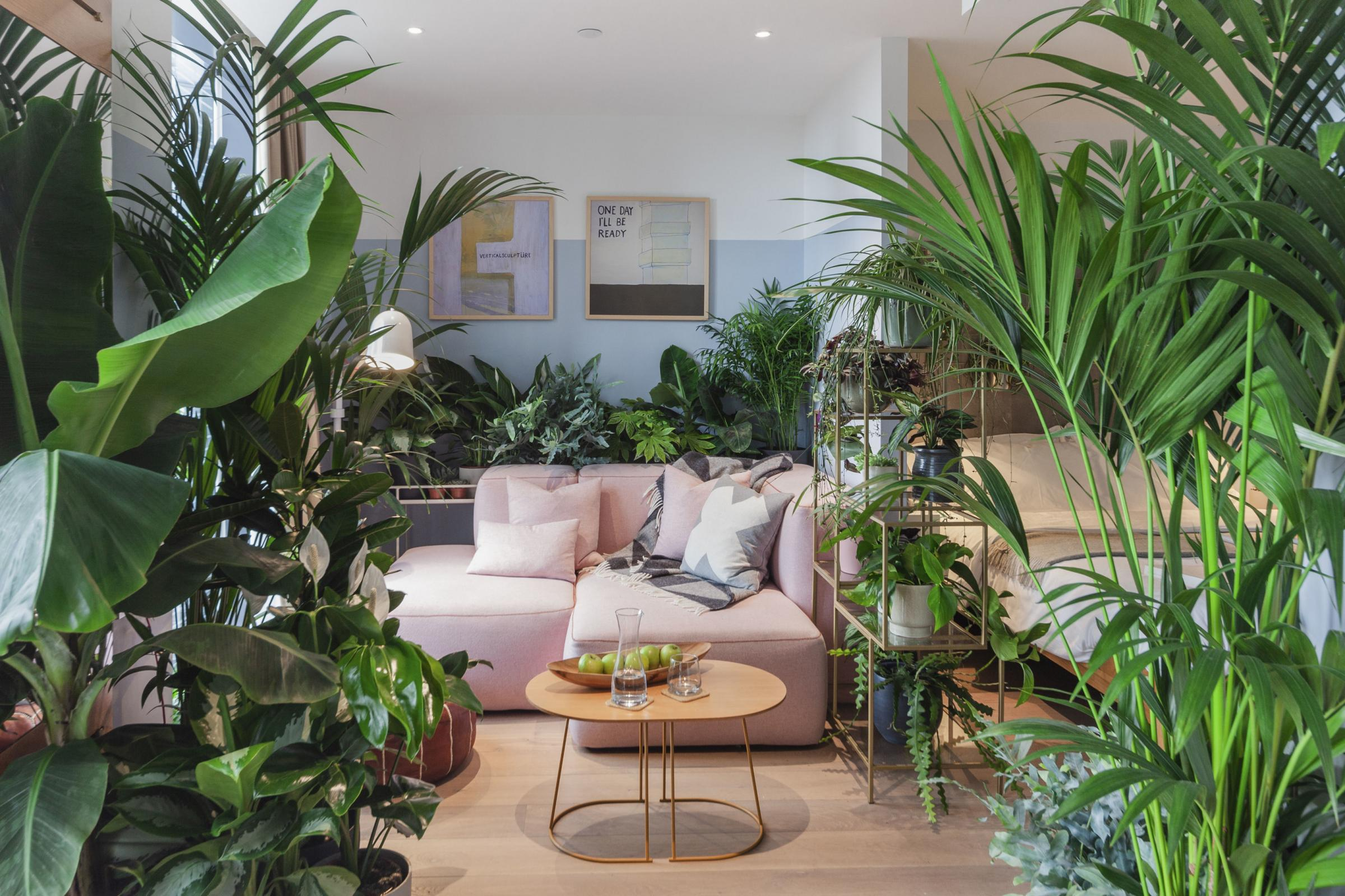 'Biophilia': How to turn your indoor spaces into leafy havens