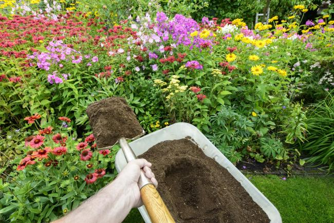 Someone shovelling compost on to a flower bed. Picture: iStock/PA