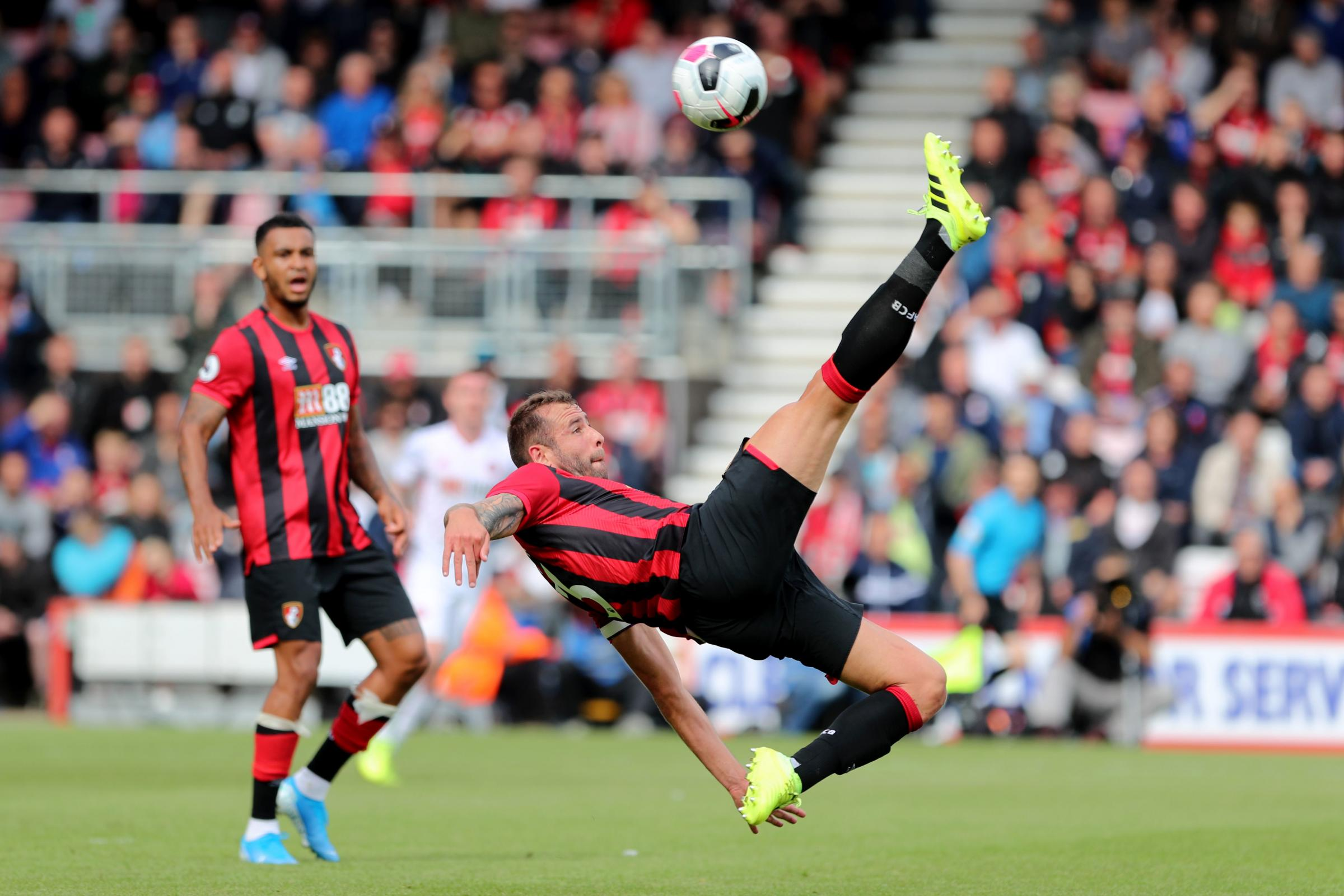 Clean sheets and full fitness leave AFC Bournemouth star Steve Cook feeling 'on top of the world'