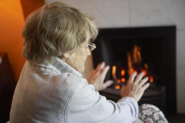 Winter death concerns for Dorset
