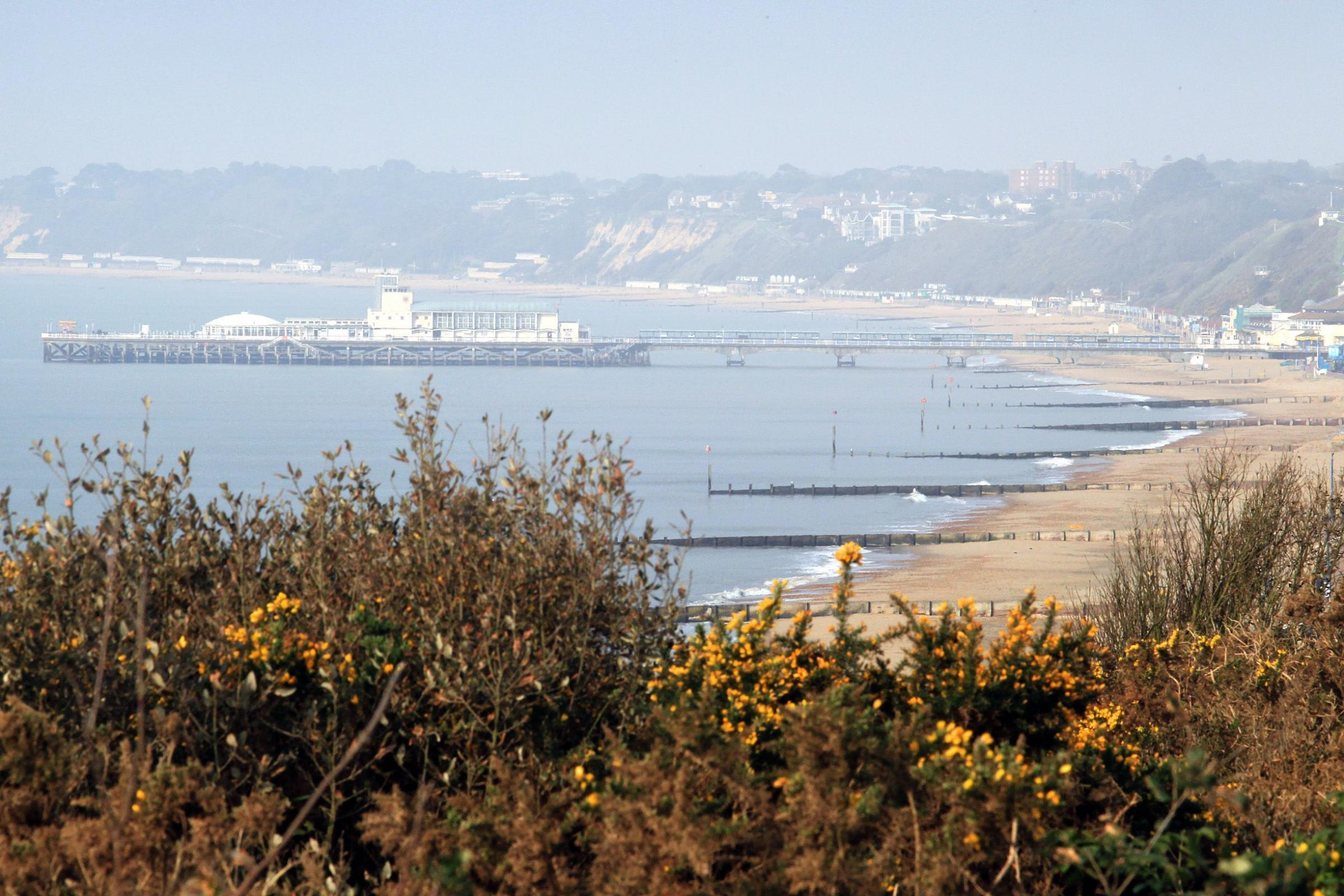 Woman who died after being pulled from the sea off Bournemouth Pier is named