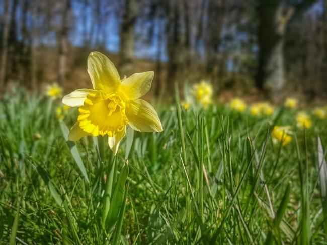 Here's the weather forecast for the Easter weekend