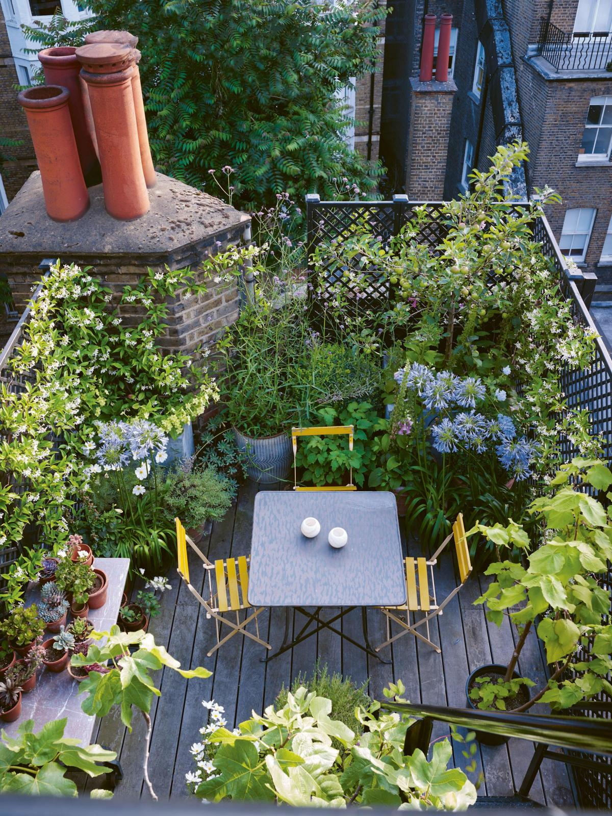 How To Transform Your Small Garden Or Balcony Bournemouth Echo