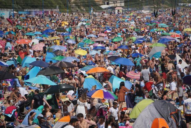 """Many beachgoers showing """"almost no respect"""" for environment or each other"""