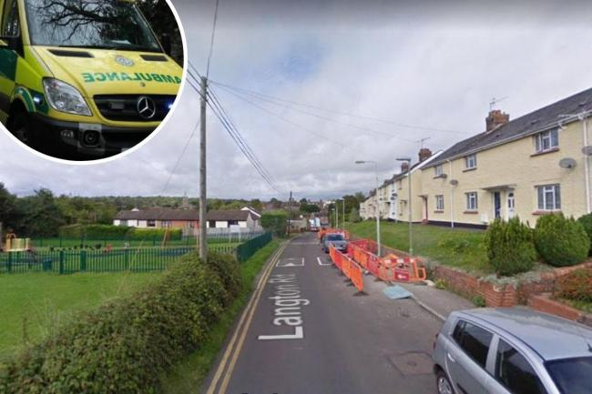 A woman in her 30s was shot with a BB gun in Langton Road, Blanford