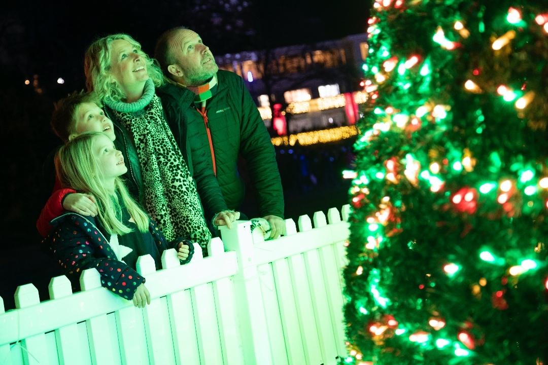 No Bournemouth Christmas Tree Wonderland This Winter Bournemouth Echo