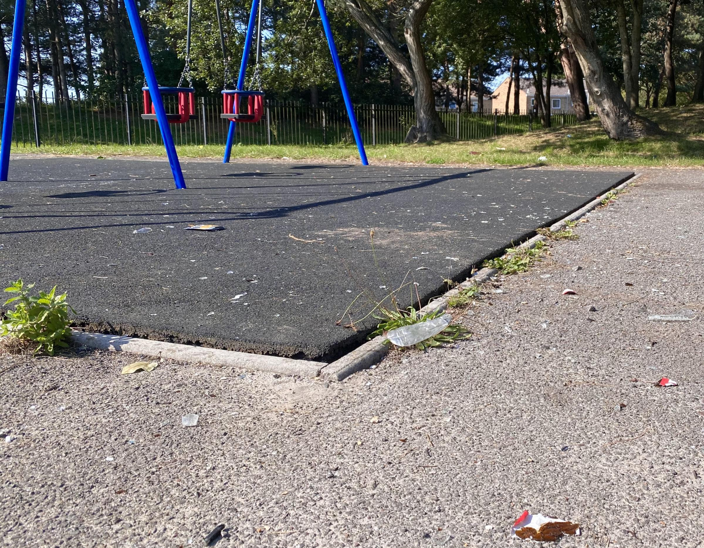 'The park is now a magnet for antisocial behaviour'
