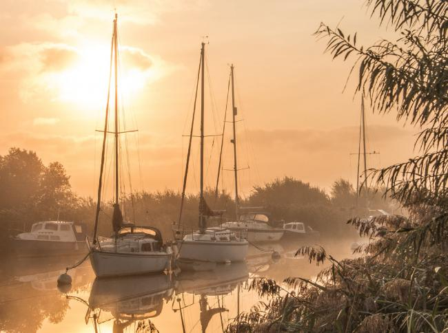 A stroll along the River Frome from Wareham Quay lead Echo Camera Club member Michelle Miller to capture this tranquil misty image of the river in the early morning light.