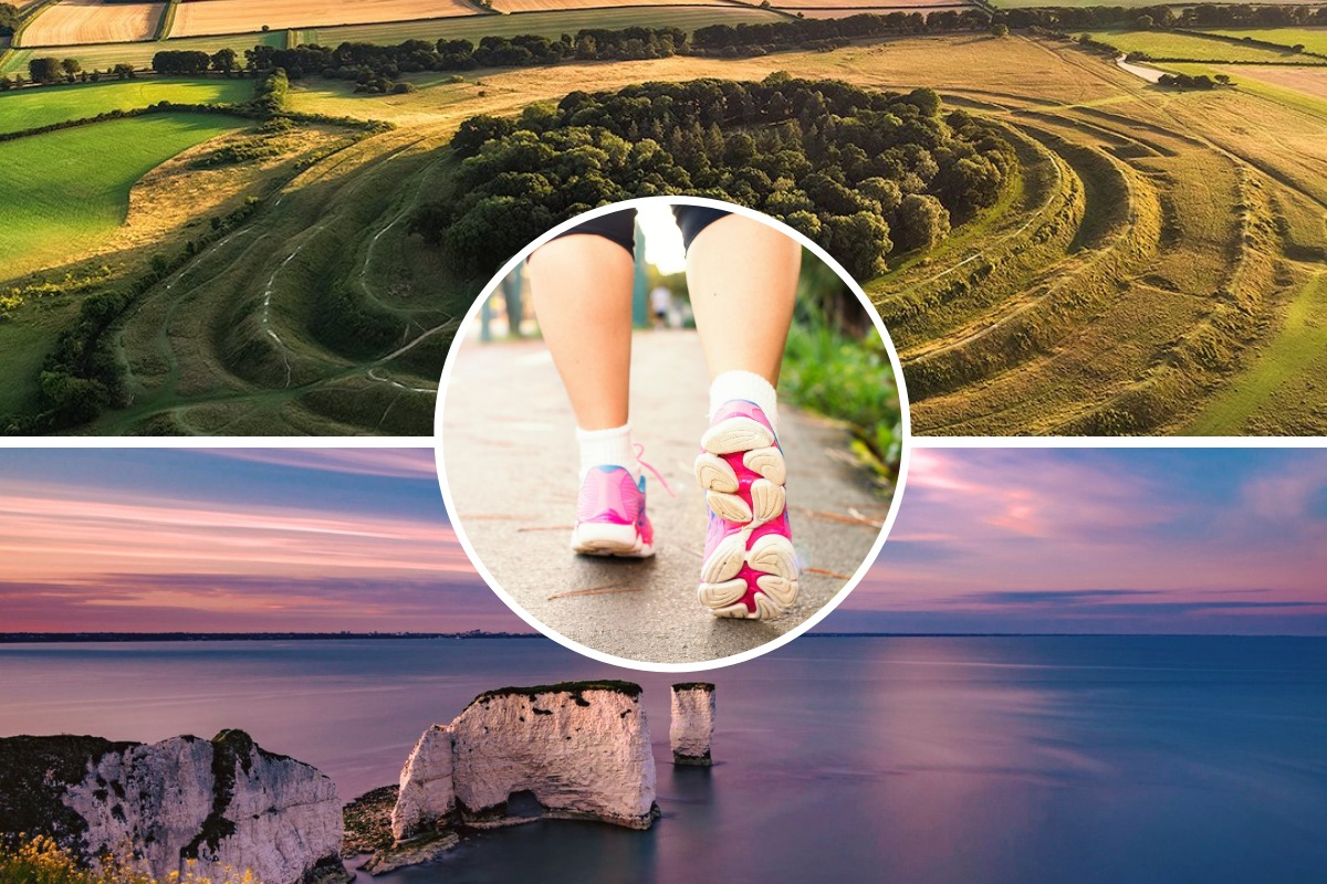Five scenic walks within an hour's drive of Bournemouth