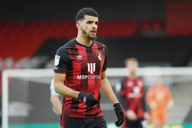 Cherries striker Dominic Solanke.