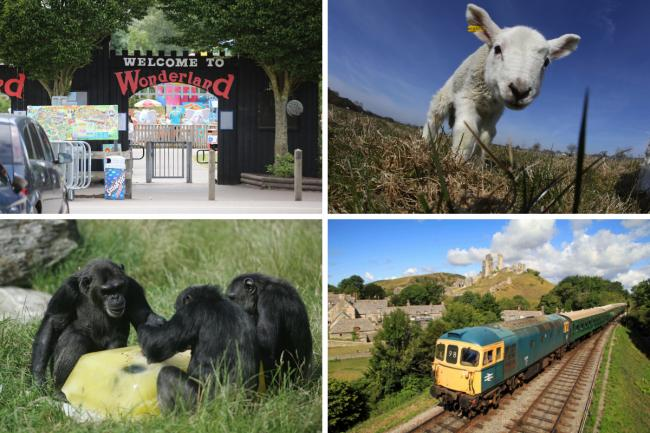 All the outdoor attractions in Dorset opening from Monday
