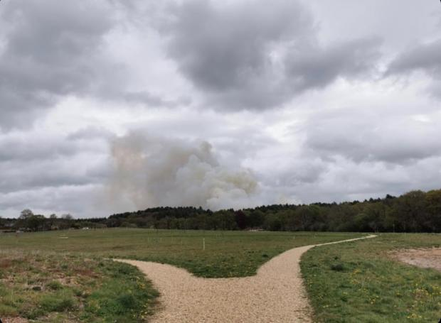 Bournemouth Echo: Heath fires break out in Verwood. Picture: Tom Knight