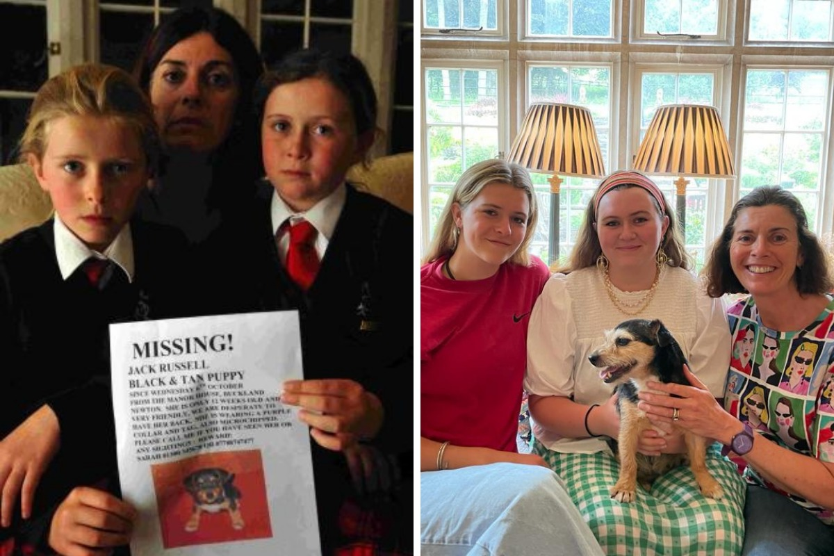 Dorset family back with dog 11 years after it went missing