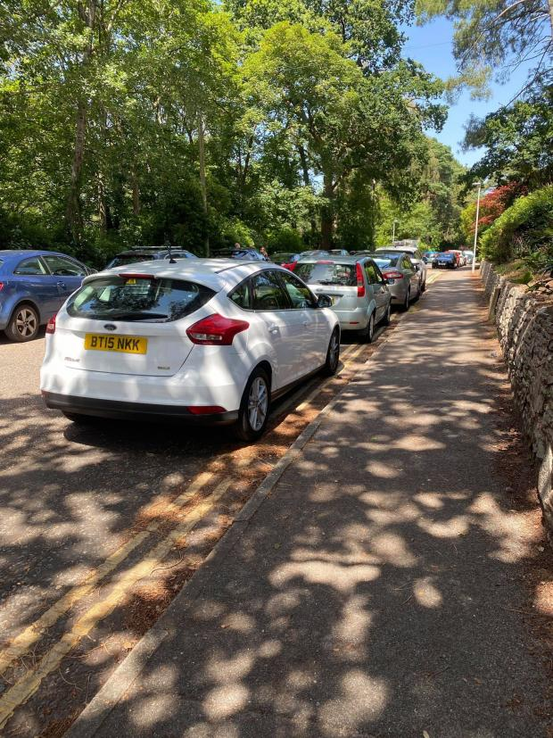 Bournemouth Echo: Illegal parking on Lakeside Road
