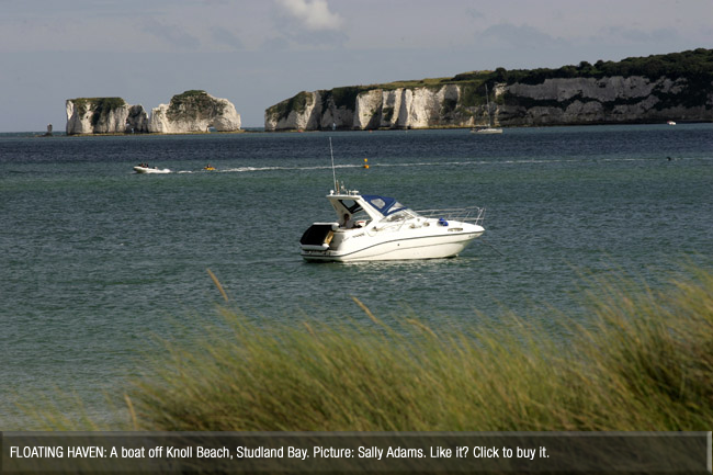 Bournemouth Echo: Old Harry from Studland