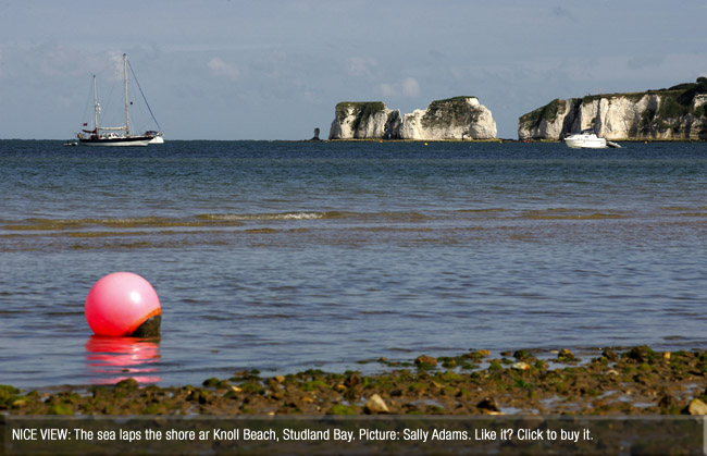 Bournemouth Echo: Old Harry from Studl\and