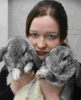 RESCUED: Fiona Prentice, veterinary assistant at ArkAid in Southbourne with the two abandoned rabbits. Picture: Richard Crease.