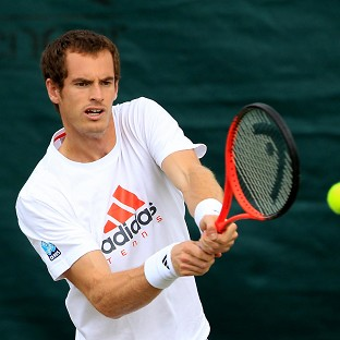 Andy Murray will face Nikolay Davydenko in his opening match at Wimbledon