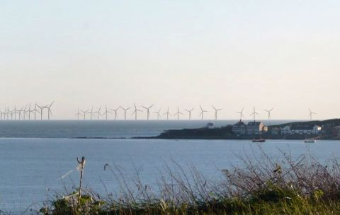 Warning over planned Dorset wind farm