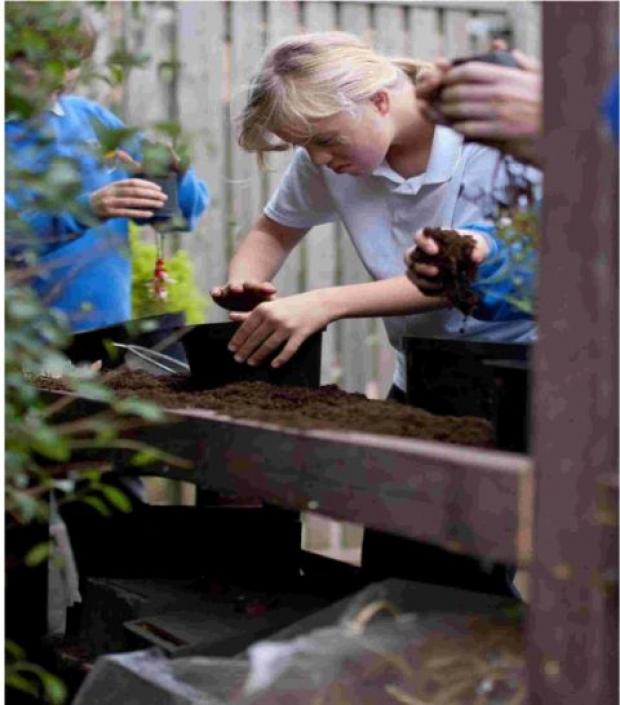 GOING GREEN: Linwood School