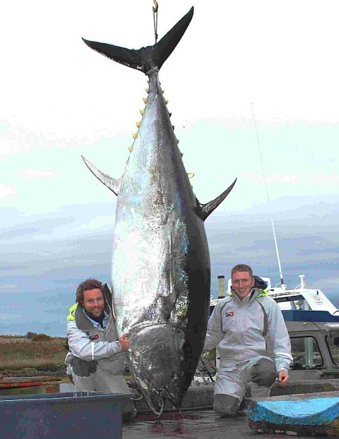 CATCH OF THE DAY: Neil Cooke and Mark Towers with the monster fish