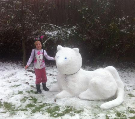 Bournemouth Echo: Your pictures of the snow