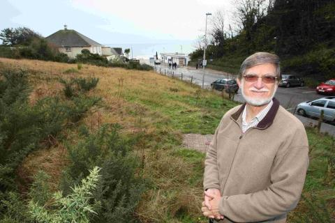 Bournemouth Echo: Could this space soon be a butterfly farm?