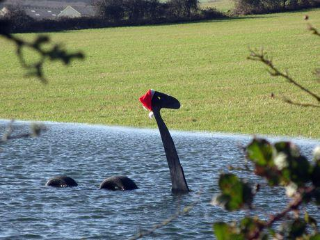 MONSTER: 'Nessie' has appeared in Wool