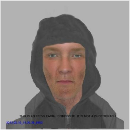 Police issue e-fit in hunt for man who attacked 15-year-old girl