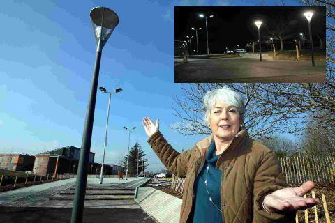 Annie Raven-Vause is furious about the lights at eco-friendly QE school in Wimborne, inset top