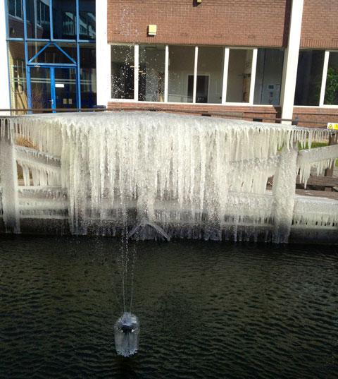 "Poole's amazing ""icicle fence"""
