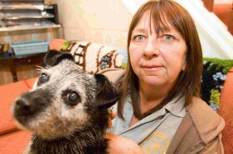 Sue Carr, of Waggy Tails charity, pictured with 12-year-old terrier Holly