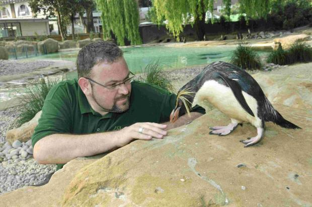 P-P-P-PENGUIN: Stars of The Zoo, Adrian Walls and Ricky the rockhopper penguin