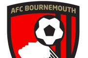 AFC Bournemouth: Cherries post £10.3million loss for first Championship campaign