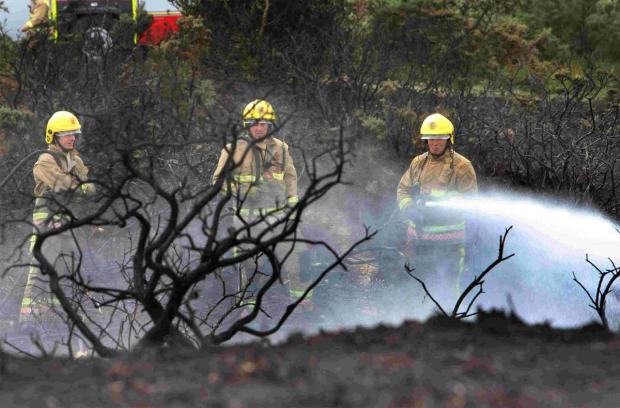 Bournemouth Echo: HEATH BLAZE: Fire crews from Swanage  dampening down on Studland Heath
