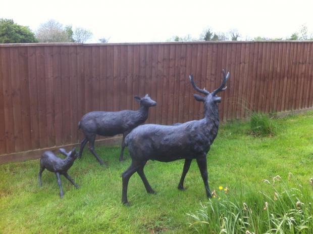 The deer statues that were stolen.
