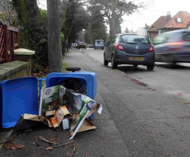 Bournemouth Echo: CLEAN-UP: Overflowing recycling bins in Poole