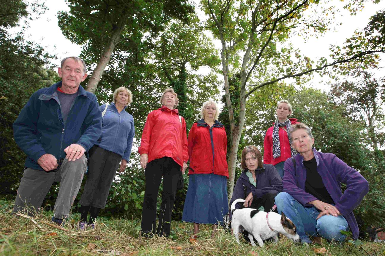 Druitt Gardens campaigners celebrate as tree felling scheme thrown out by council