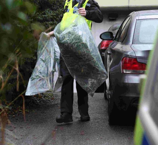 LARGE FIND: A police officer leaves 17a Braidley Road in Bournemouth with two large bags full of cannabis plants