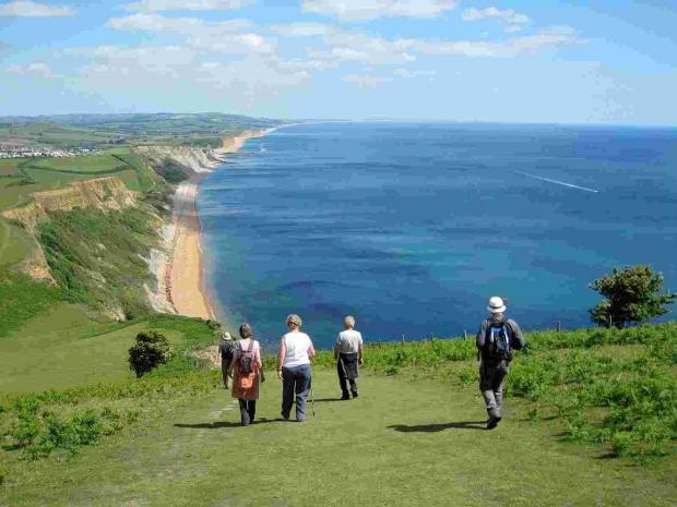 Wildlife and walks - a guide to what's happening in Dorset now and in 2014