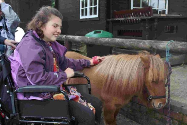 Disability charity appeal to help with funding for Elfin the Shetland pony