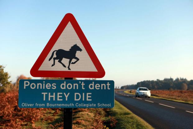 File pic: Part of the campaign to warn drivers to slow down in New Forest