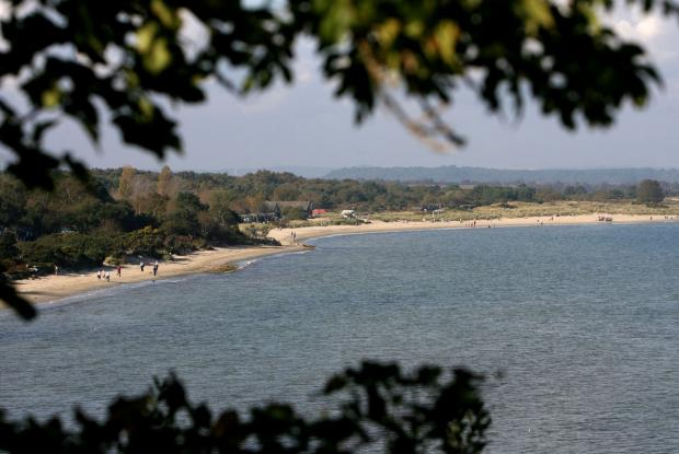 Bournemouth Echo: Ten spectacular Studland facts